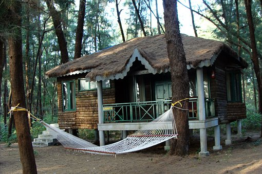 Log, Hut, Wood Cabin, Slanted Roof, Forest, Casuarina