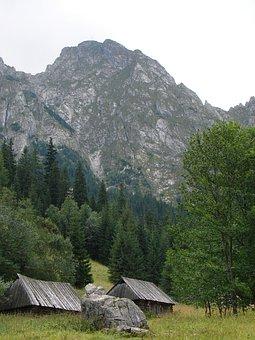 Mountain, Mountains, Top, Nature, Tatra, Poland