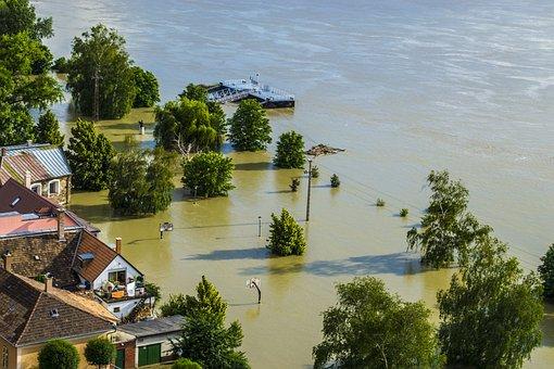 Flood, Danube, Sandbag, Park, Basketball, Palisade