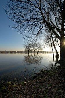 Rheingau, Eltville, High Water