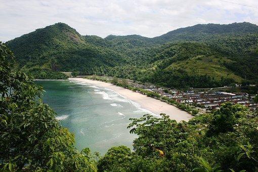 Mar, Tropical Vegetation, Atlantic Forest, Vista, Angra