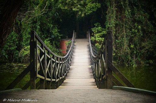 Bridge, Rio, Pond, Santos, Lagoa Da Saudade, Nature