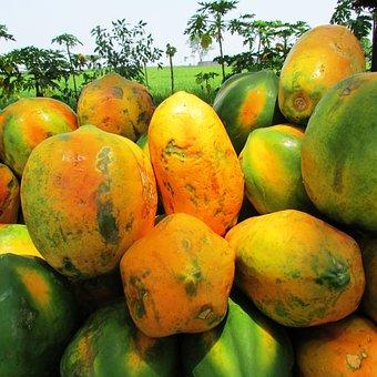 Papaya, Fruit, Ripe, Tropical, Exotic, Heap, Malebennur