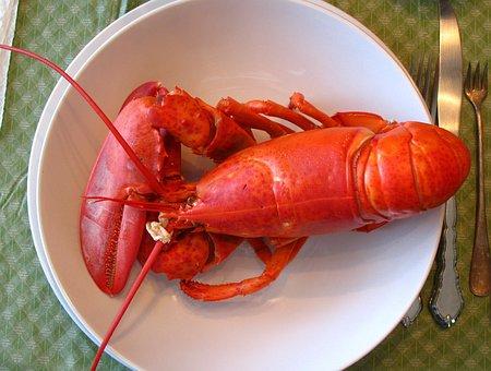 Lobster, Maine, Dinner, Seafood, New, England, Atlantic