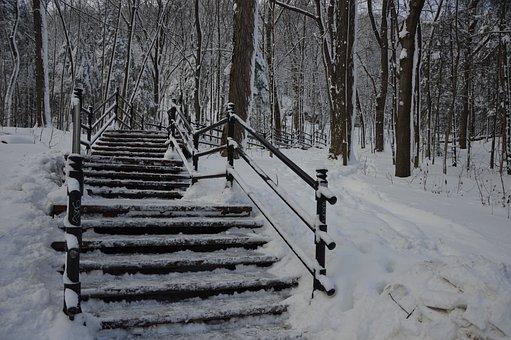 Winter, Montréal, Mount Royal, Ice, Snow, Blue, Frost
