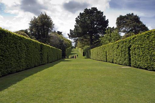 Hidcote Manor Garden, Long Avenue