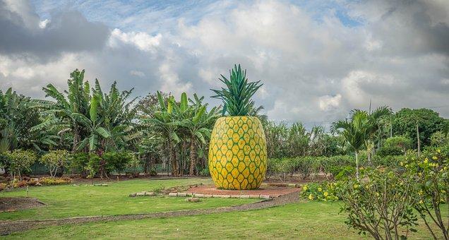 Pineapple Decoration, Dole Plantation, Hawaii, Oahu