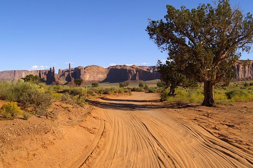 Monument Valley, Dusty Road, Tree, Red Rocks, Utah, Usa
