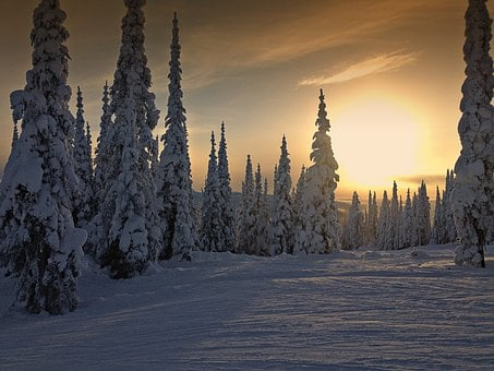 Winter, Sunset, Weather, Snow, Skihill, Trees