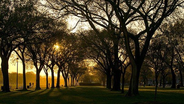 Washington Dc, Morning, Sun, Sky, Capitol, Capital
