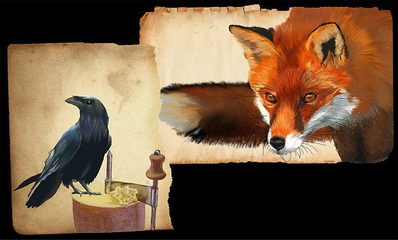 Fox And Crow, Drawing Graphics Tablet, Tête De Moine