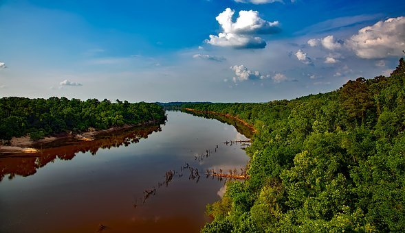 Alabama River, Water, Reflections, Sky, Clouds, Forest