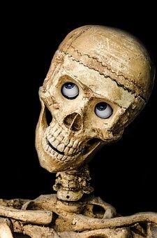 Skull, Halloween, People, Mask, Dummy, Scary, Holidays