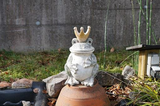 Frog, King, Fig