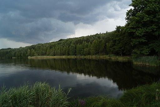 Lake, Lakeside, Waterfront, Nature, Landscape, Forest