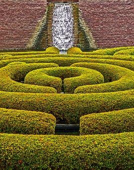 Hedgerow, Hedge, Landscaping, Garden, Park, Los Angeles