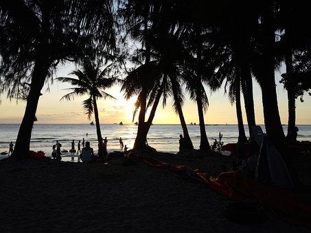 Boracay, Beach, Recreation Area, Travel, Palm Tree