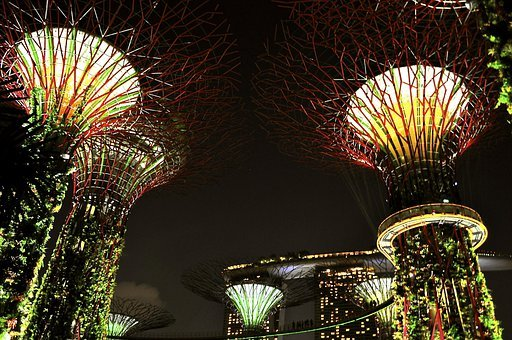 Singapore, Nights, Lights, Lamps, Tall, Trees, Dark