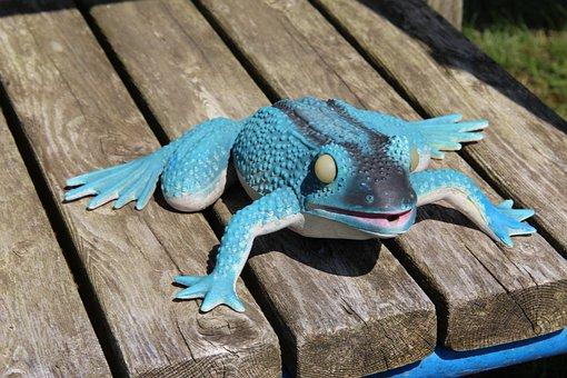 Frog, Bench, Lon, Joke, Amphibian, Happy