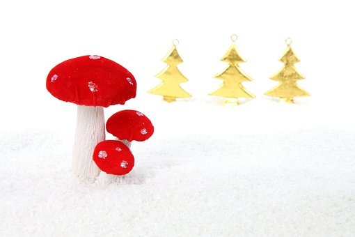 Celebration, Christmas, Decoration, Holiday, Isolated