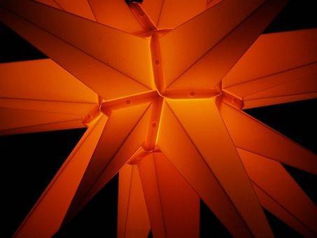 Poinsettia, Christmas, Star, Light, Lighting, Darkness