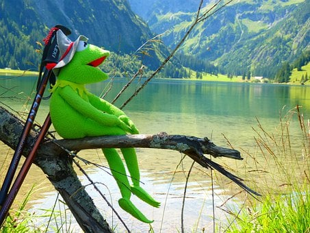 Kermit, Frog, Doll, Fig, Hat, Tyrolean Hat
