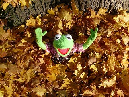 Kermit, Green, Frog, Leaf Piles, Cheer, Hurray, Great