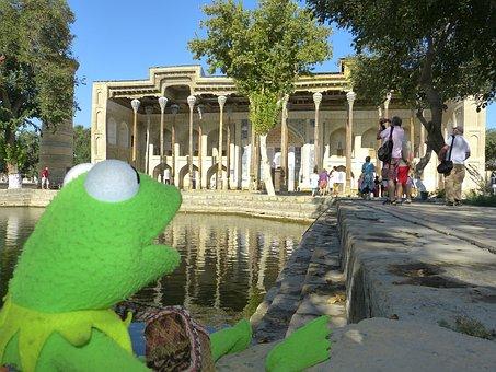 Bolo Hauz, Mosque, Columnar, Kermit, Frog