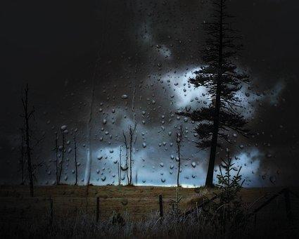 Stormy, Landscape, Droplets, Sky, Weather, Trees