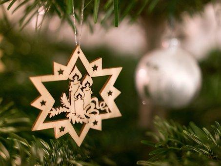 Christmas, Star, Christmas Tree Star, Poinsettia