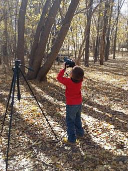 Photography, Boy, Learn, Camera, Tripod, Trees, Light