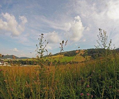 View, Ettelsberg, Sauerland, Hochsauerland, Field