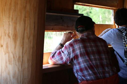 Log Cabin, Hiding Place, Wild Animal Luke, Watch