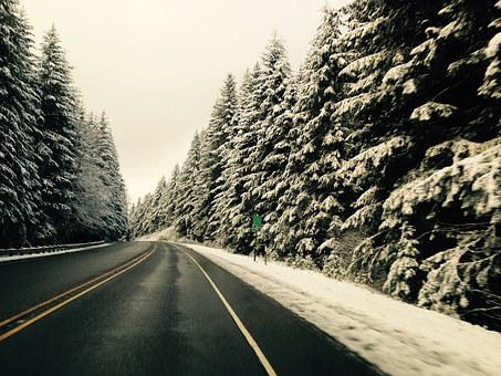 Snow, Oregon, Mountain, Scenic, Travel, Forest