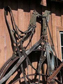 Harness, Steinbach, Mennonite Heritage Village