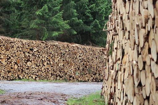 Wood, Holzschlag, Timber Industry, Stacked, Tree Wood