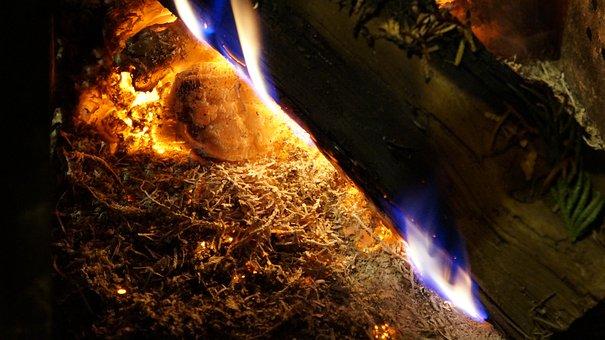 Fire, Embers, Burn, Campfire, Flame, Wood, Heat, Hot
