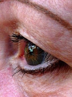 Eye, Moment, Brown, Cheeky, Friendly, Face, Close Up