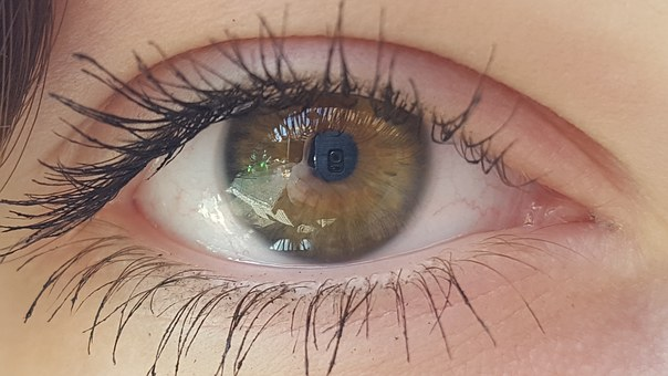 Eye, Watch, Green, Eyelashes, Look At, Glance, Shiny