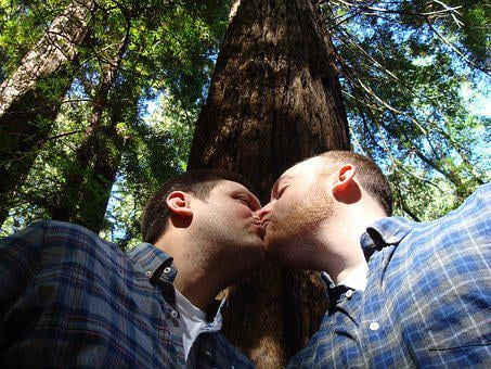Gay Marriage, Love, Kiss, Nature, Natural, Couple