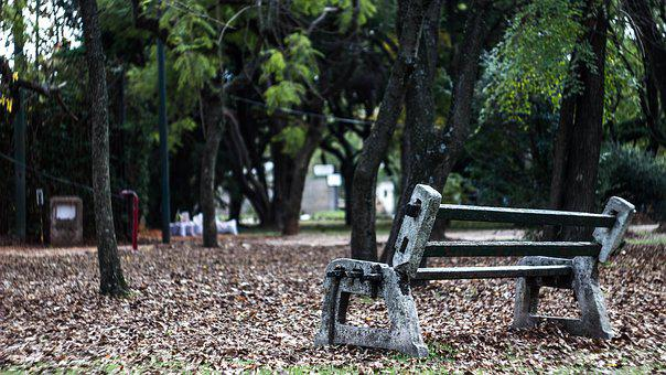 Lonely, Bench, Lea, Park, Alone, Sitting, Nature