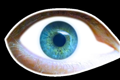 Eye, Iris, Eyelid, View, Look, See, Pupil