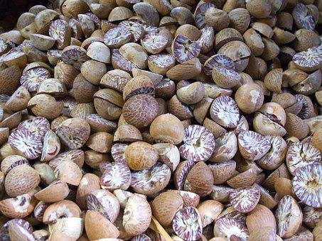 Nutmeg, Myristica, Spice, Fruit