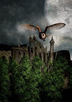 Owl, Castle, Ruin, Trees, Sky, Clouds, Landscape