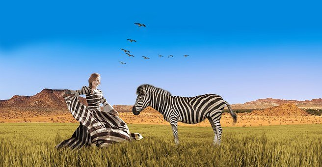Woman, Dress, Beautiful, Zebra, Fashion, Africa