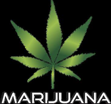 Background, Black, Cannabis, Culture, Design, Drug