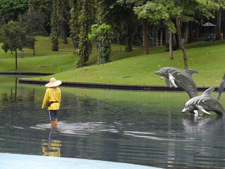 Water, Dolphins, Malaysia, Pool, Design, Park, Stroll