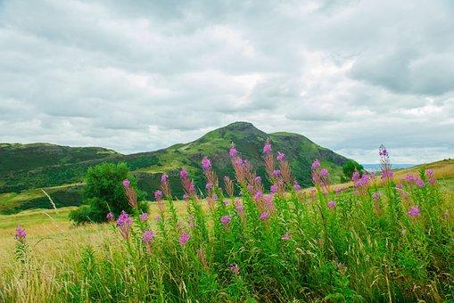 Holyrood Park Edinburgh, Park, Holyrood, View, Nature