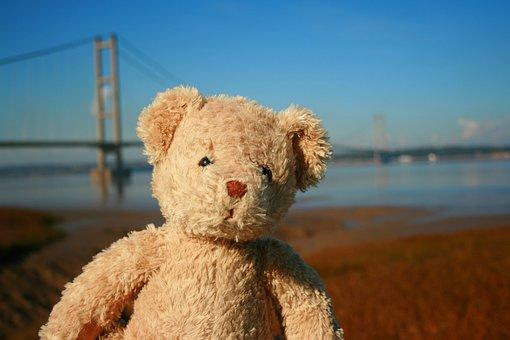 Teddy Bear, Bear, Teddy, Toy, Cute, Love, Soft, Brown