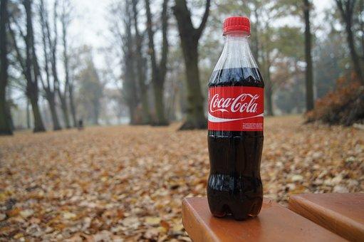 Coca Cola, The Drink, Drinking, Sugar, Park, Bench